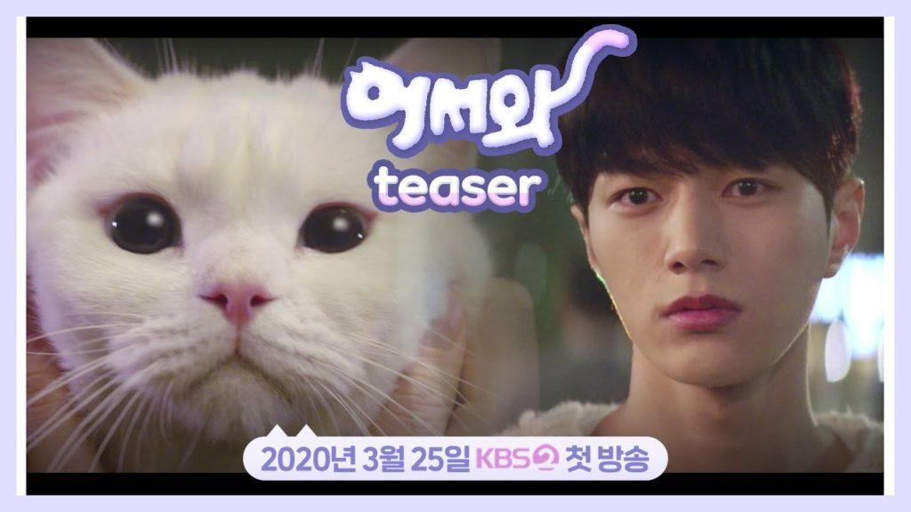 おかえり(韓国ドラマ)猫の名前は?かわいくて演技も上手い?